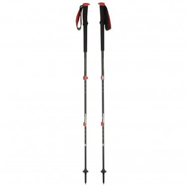 03c8d0431c2 Christmast Gift Ideas Walking Poles